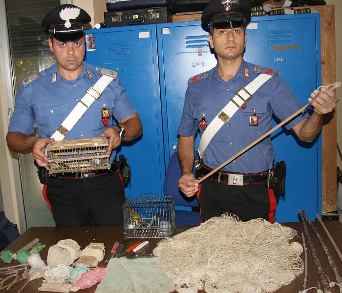 Termini Imerese, sorpresi a catturare cardellini: denunciati dai carabinieri