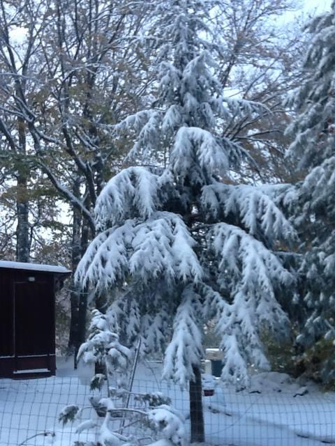 Neve a Piano Battaglia, non ci sono gli spalaneve, polemiche tra i residenti