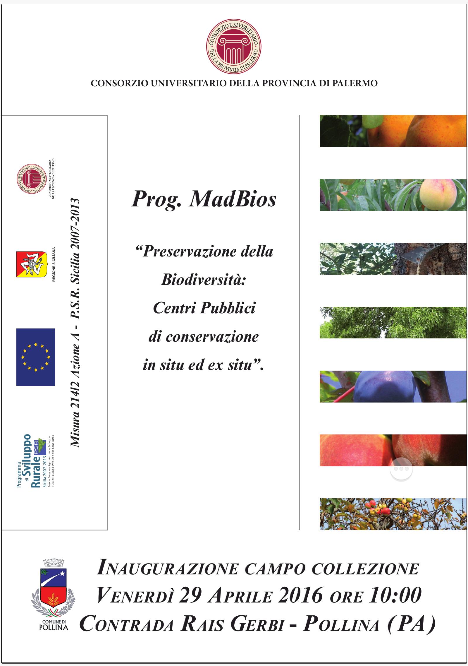 """Pollina, agricoltura: venerdì l'inaugurazione del progetto """"MadBios"""""""