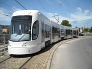 Tram, linea 2, leggera modifica al percorso per salvare gli alberi