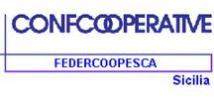 "Tragedia di Lampedusa, Federcoopesca: ""Nessuno accusi i pescatori locali"""