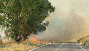 incendio-statale-290-3