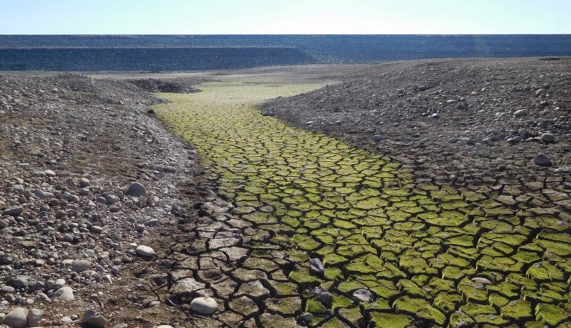 Siccità, danni per gli agricoltori. La CIA chiede lo stato di calamità