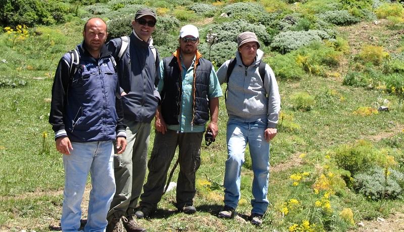 Torna nei campi la frutta di un tempo e quasi estinta: il progetto nel cuore delle Madonie