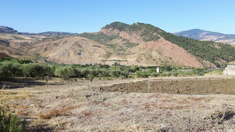A Scillato una giornata dedicata alle eccellenze agroalimentari delle Madonie
