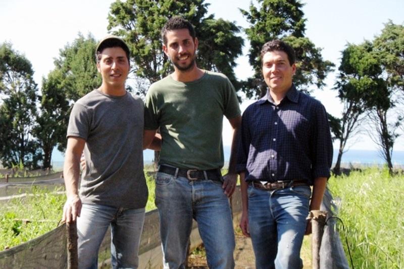 Diventare allevatori di lumache: corsi di formazione gratuiti da Lumaca Madonita