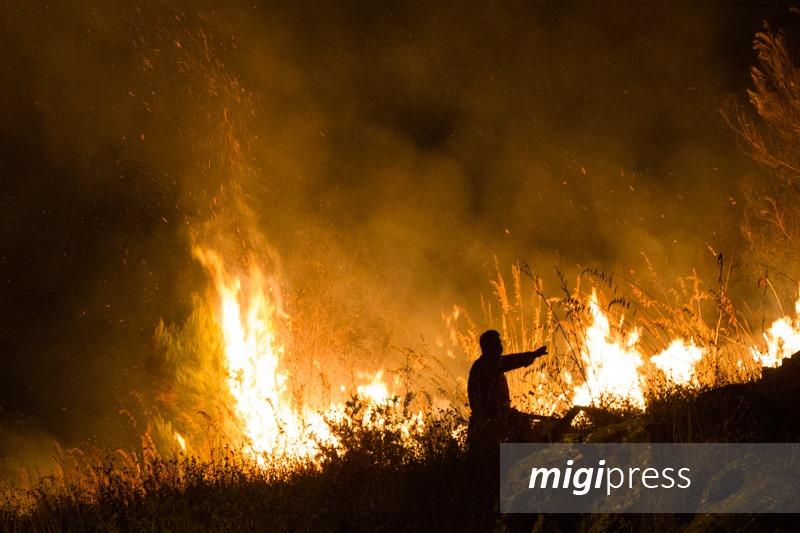 Niente incendi la domenica e i festivi, stop alle attività della Forestale