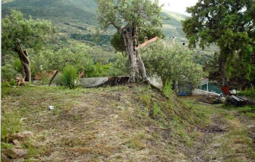 Finanziato il progetto per sistemare la frana di Borrello (dopo 30 anni)