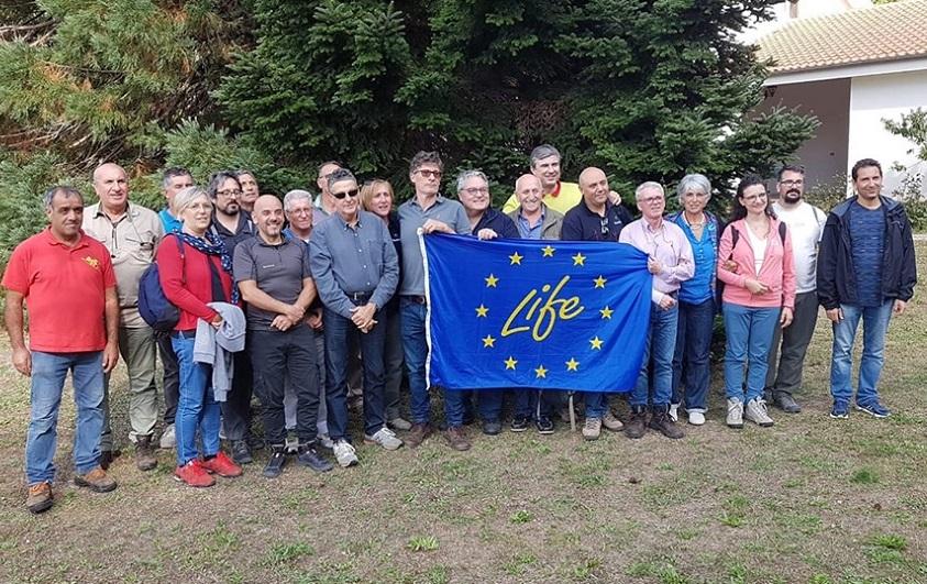 Salvaguardia e riforestazione dell'abete delle Madonie: parte il progetto Life