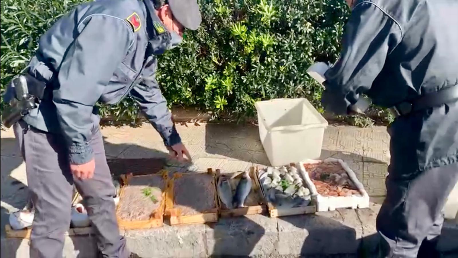 Col reddito di cittadinanza, ma vende pesce abusivamente: sequestro e multa